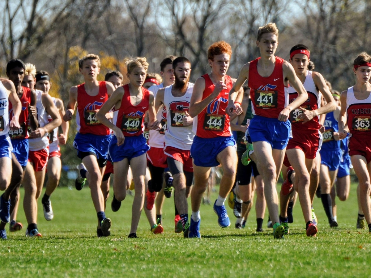 The Carroll High School boys' cross country team competes at the Ohio High School Athletic Association Division II State Championships.